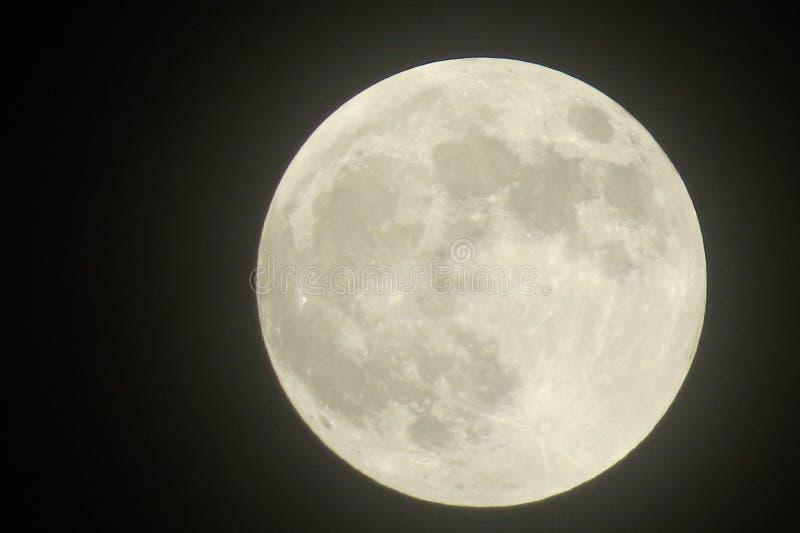 zbliżenie księżyc w pełni pokazuje kratery zdjęcia stock