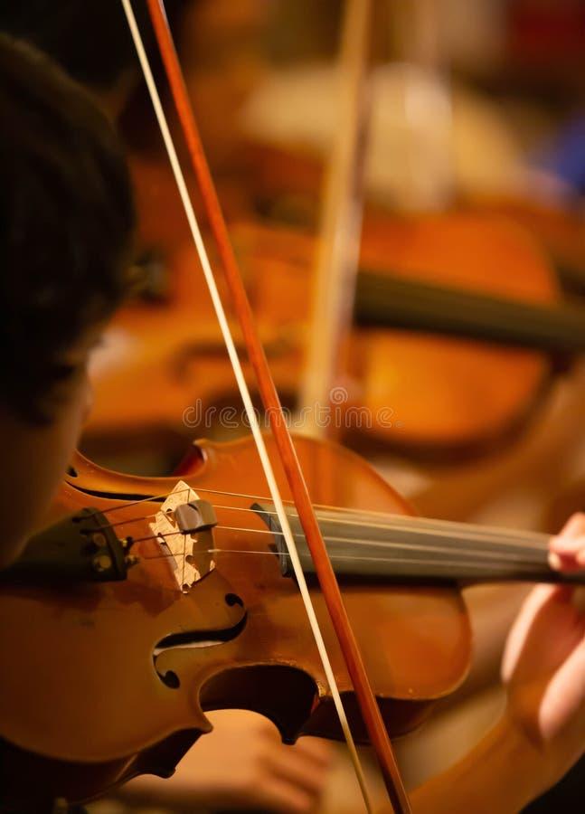 Zbliżenie muzyk ręka bawić się skrzypce w orkiestrze fotografia royalty free