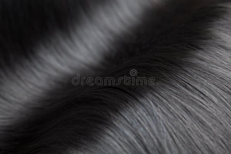 Zbliżenie na luksusowym glansowanym czarni włosy obraz stock