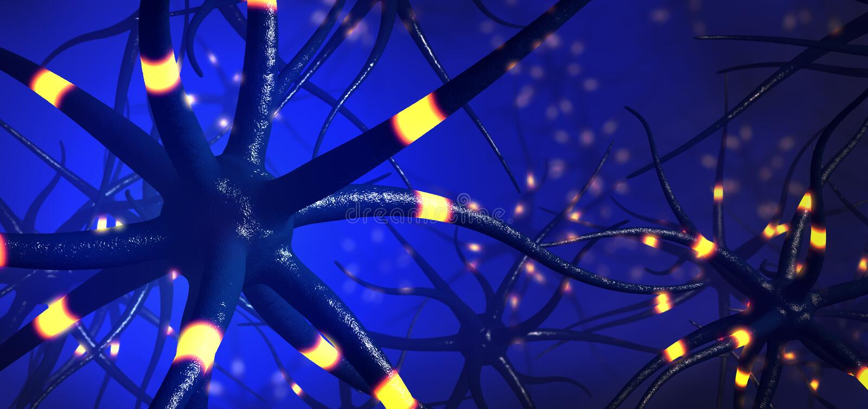 Zbliżenie na przesyłowych komórkach mózgowych lub neuronie ilustracji