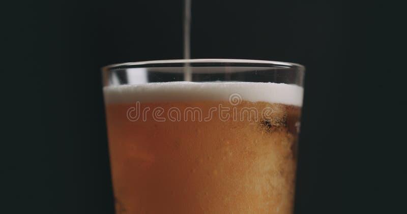 Zbliżenie nalewa lekkiego ale piwo w pół kwarty szkle nad czarnym tłem zdjęcie royalty free