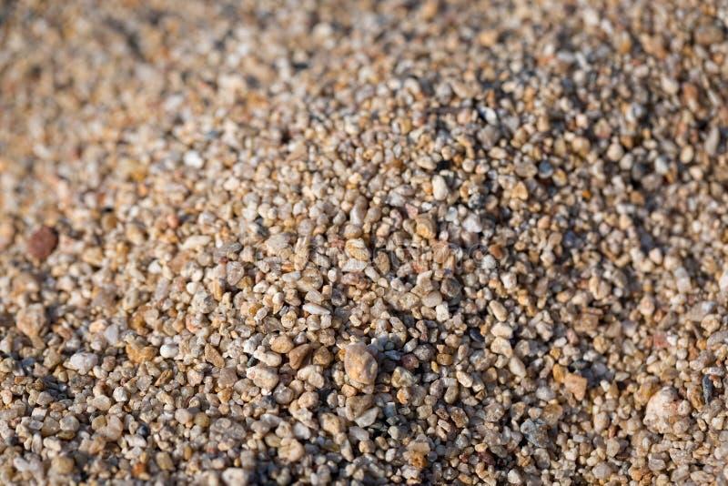 Zbliżenie piasek na plaży Kryształy denny piasek jako tło Makro- fotografia royalty free