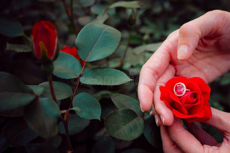 Zbliżenie pierścionek i ręka zdjęcie royalty free