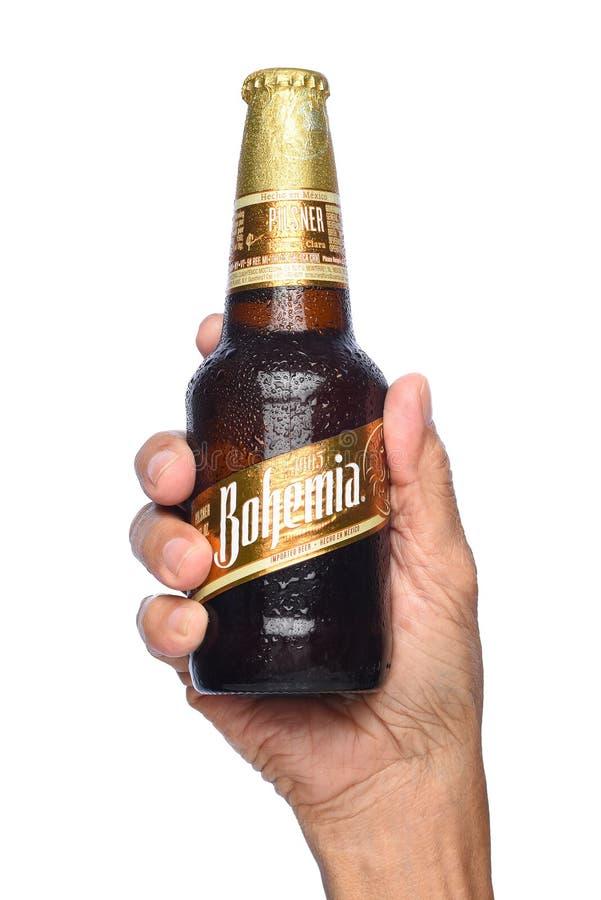 Zbliżenie ręka trzyma butelkę cyganerii piwo fotografia stock