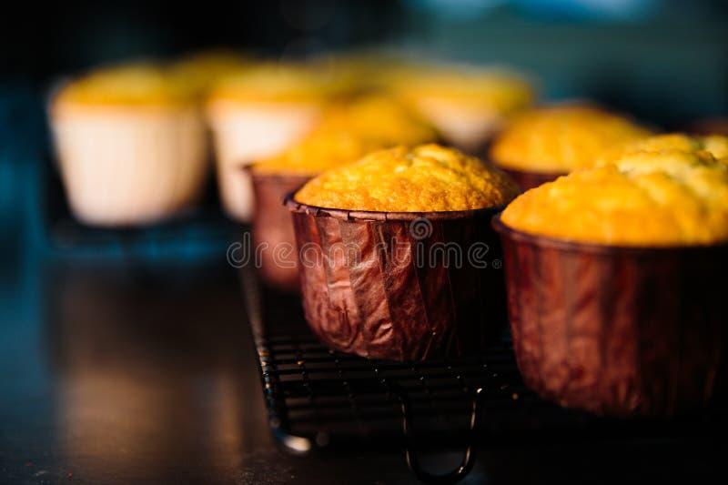 Zbliżenie rząd czarnych jagod muffins zdjęcie stock