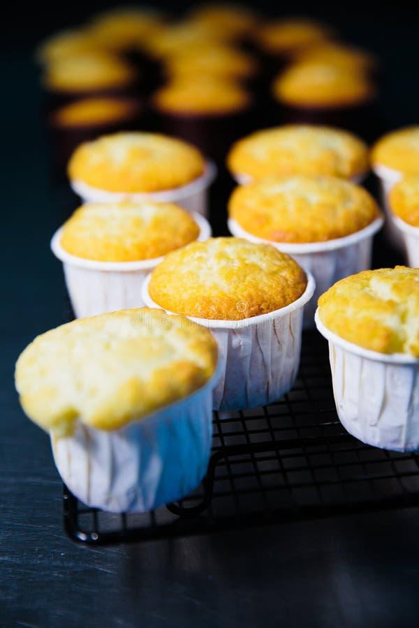 Zbliżenie rząd czarnych jagod muffins chłodzi na stojaku z drewnianym tłem fotografia royalty free