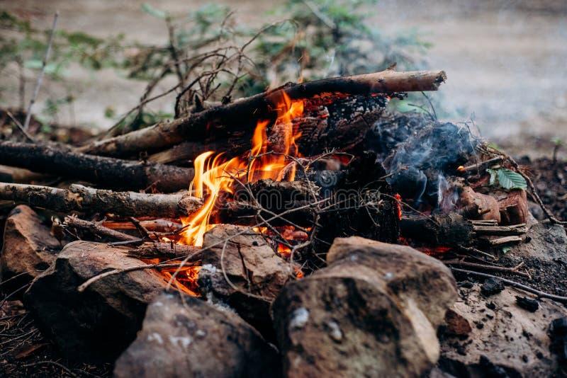 Zbliżenie strzał palenie ogień z gorącymi czerwonymi embers w nim zdjęcie stock
