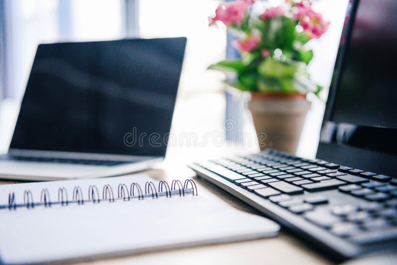 zbliżenie strzał pusty podręcznik, laptop, kwiaty w garnku, komputer, komputerowa klawiatura i komputer mysz, zdjęcie royalty free