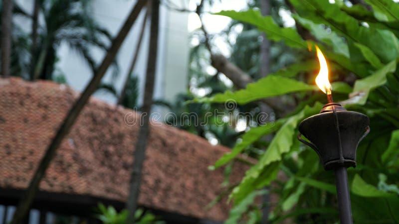 Zbliżenie strzelał Lamppost, lampion z ogrodowym tłem fotografia stock
