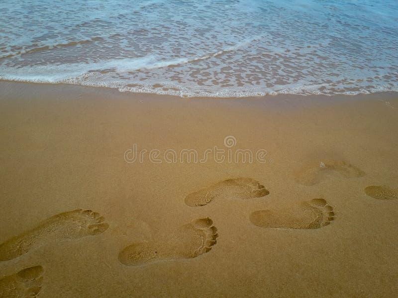 Zbliżenie szczegół żeńska stopa na plaży fotografia royalty free