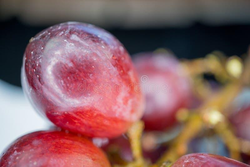 Zbliżenie wiązka winogrona fotografia stock