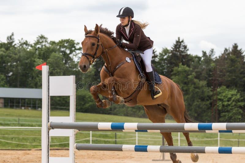 Zbliżenie widok młody blondynki horsewoman doskakiwanie obrazy royalty free