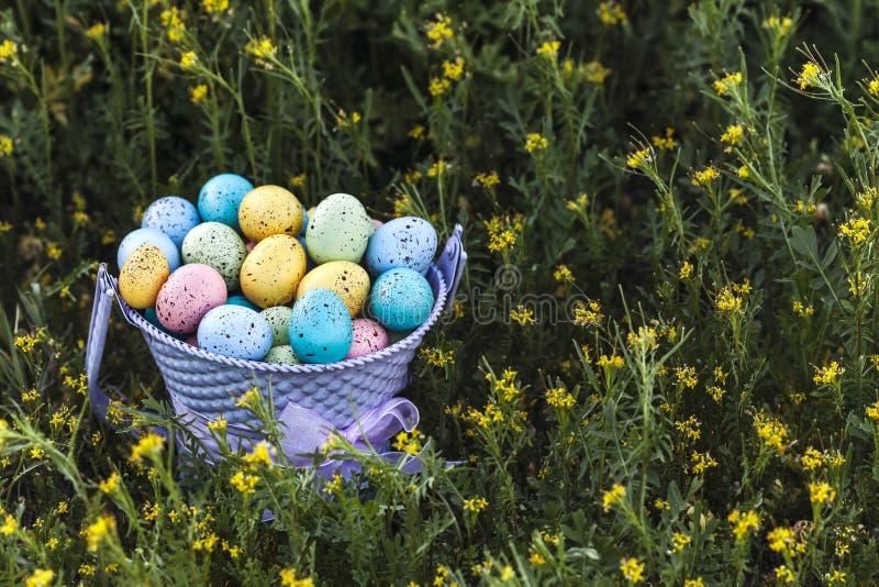 Zbliżenie Wielkanocni jajka zbierający w purpurowym wiadrze na zielonej trawie jako tło zdjęcia royalty free