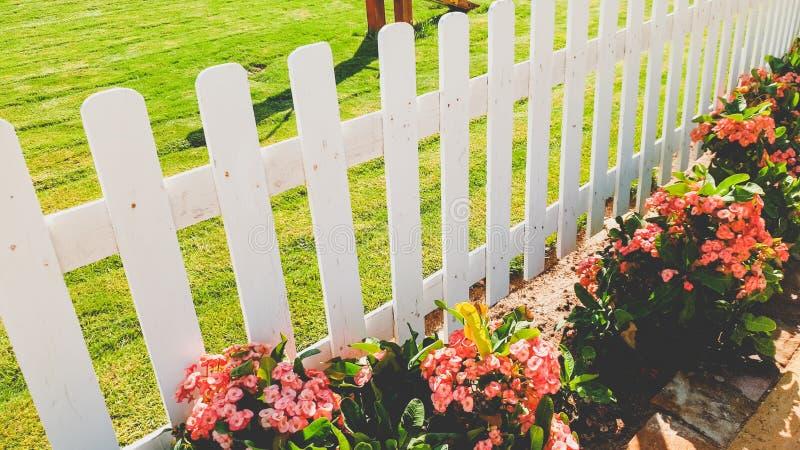 Zbliżenie wizerunek piękny biały drewniany ogrodzenie i flowerbed przy ogródem zdjęcie royalty free