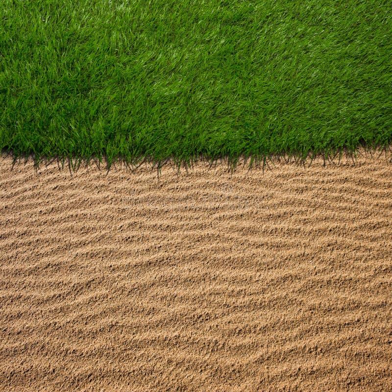 Zbliżenie zielonej trawy golfowy pole obrazy royalty free