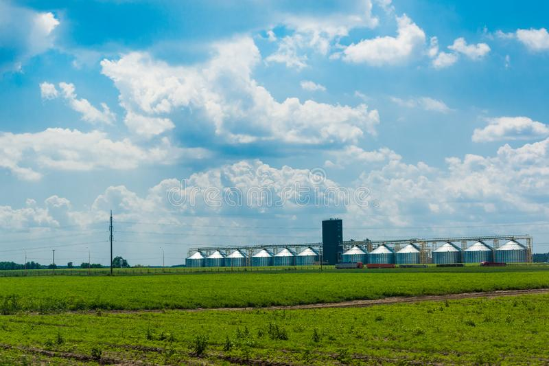 Zbożowa winda w zielonym polu Błękitny chmurny niebo Rolniczy biznes Ciężarówki iść ładowanie Wiosna zieleń zasadza potomstwa obrazy stock