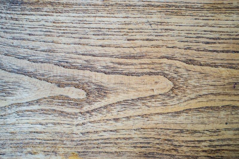 zbożowy pokrojone log drewna zdjęcie stock