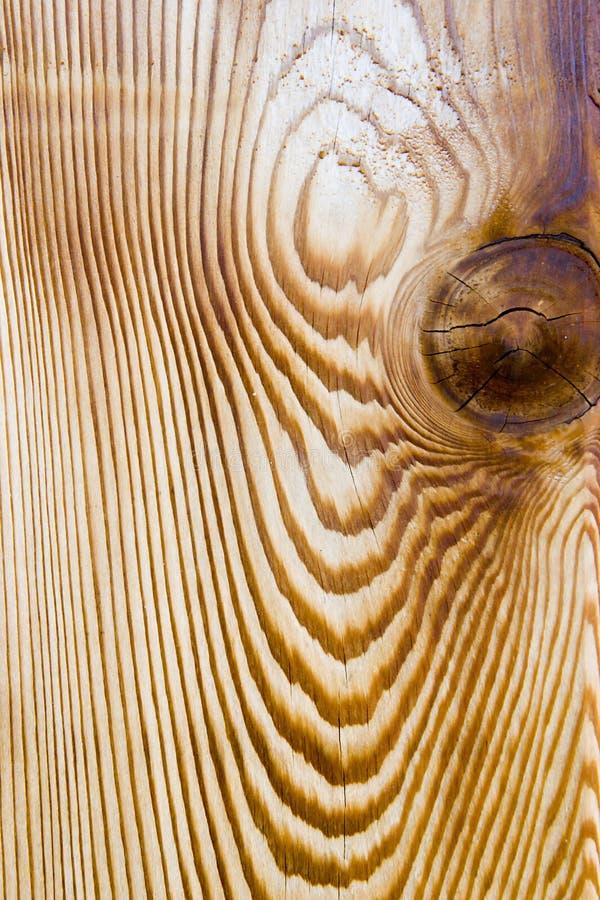 Download Zbożowy cedru drewna obraz stock. Obraz złożonej z grainer - 5831509