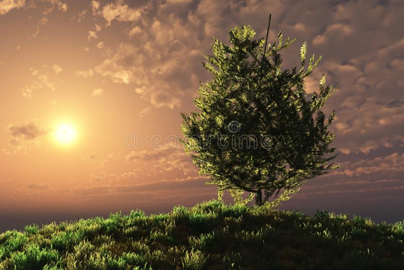 zbocze nad zmierzchu drzewem ilustracja wektor