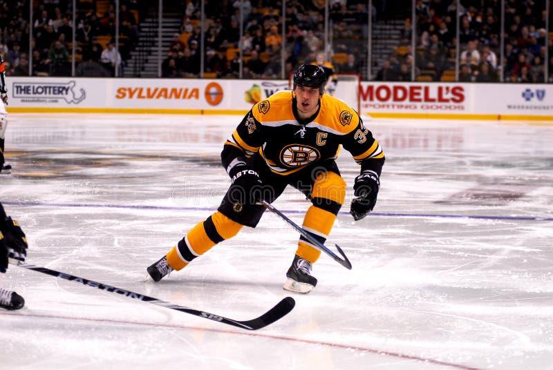 Zdeno Chara #33 Boston Bruins. Boston Bruins Defenseman Zdeno Chara #33 royalty free stock images