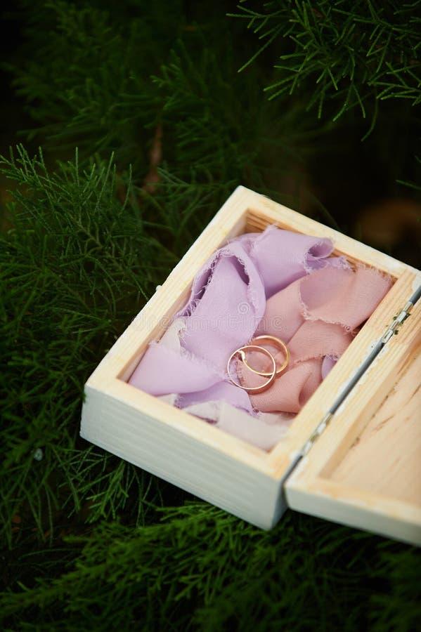 zdojest piękną pudełka zakończenia dof tkaninę dostawać odosobnienie kłaść pierścionki spłyca miękką część w górę ślubu który bie obraz royalty free