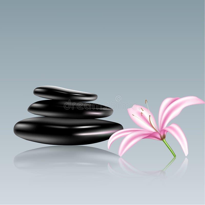 Zdrojów kamienie i leluja kwiat. Wektorowa ilustracja ilustracja wektor