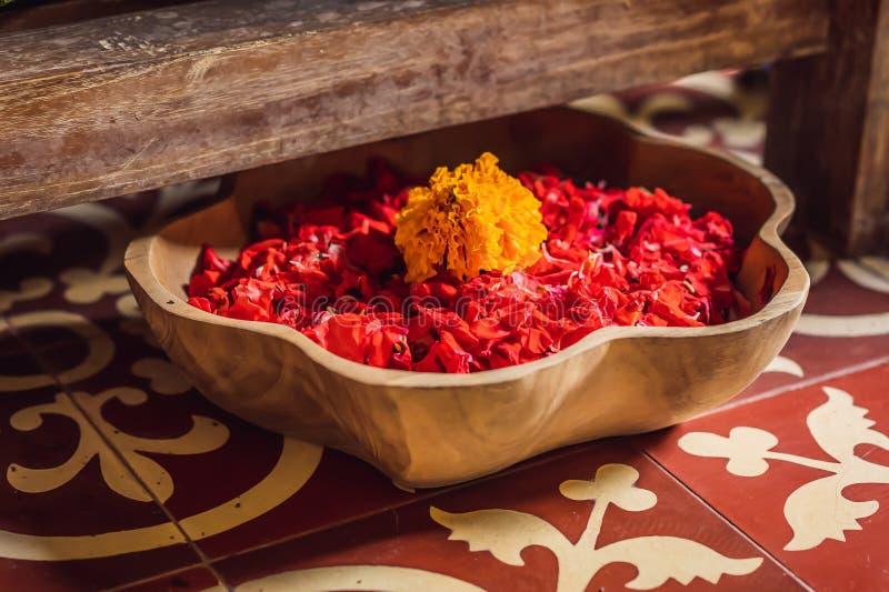 Zdrojów płatki w pucharze z tropikalnymi kwiatami, zdroju pedicure'u traktowanie zdjęcia royalty free