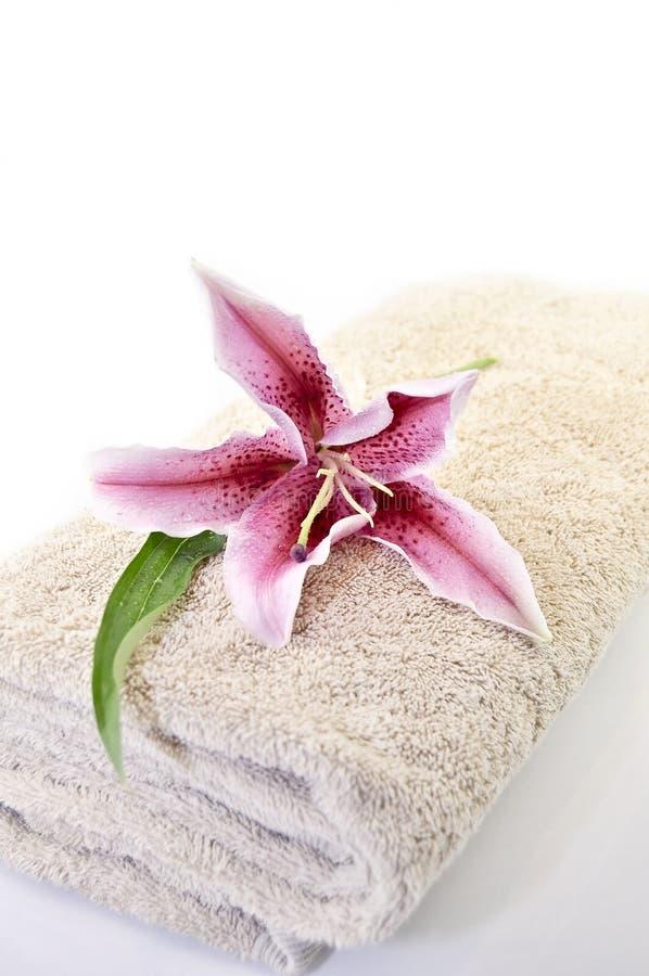 zdrojów ręczniki zdjęcia stock