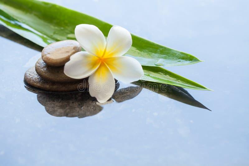 Zdroju kwiat, liście i kamienie dla masażu traktowania na czarnym tle, zdjęcie stock