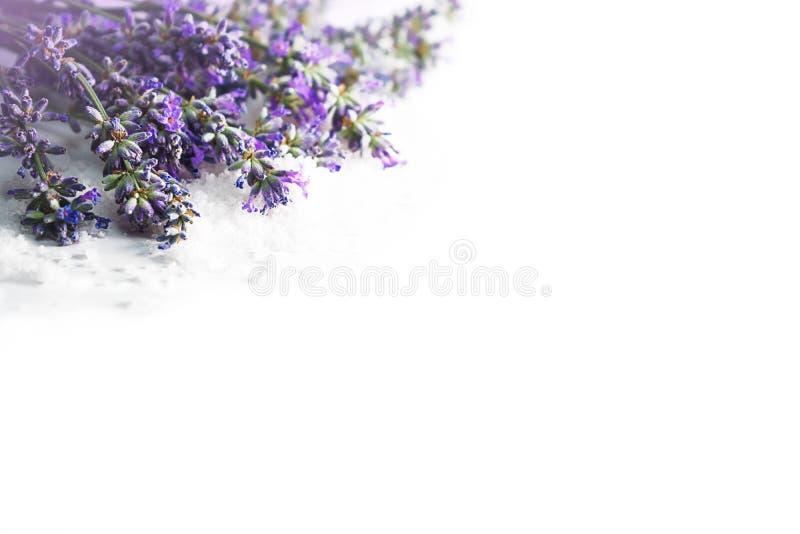 Zdroju masażu położenie z lawenda kwiatami i kosmetyk solą na białym tle, odizolowywającym fotografia royalty free