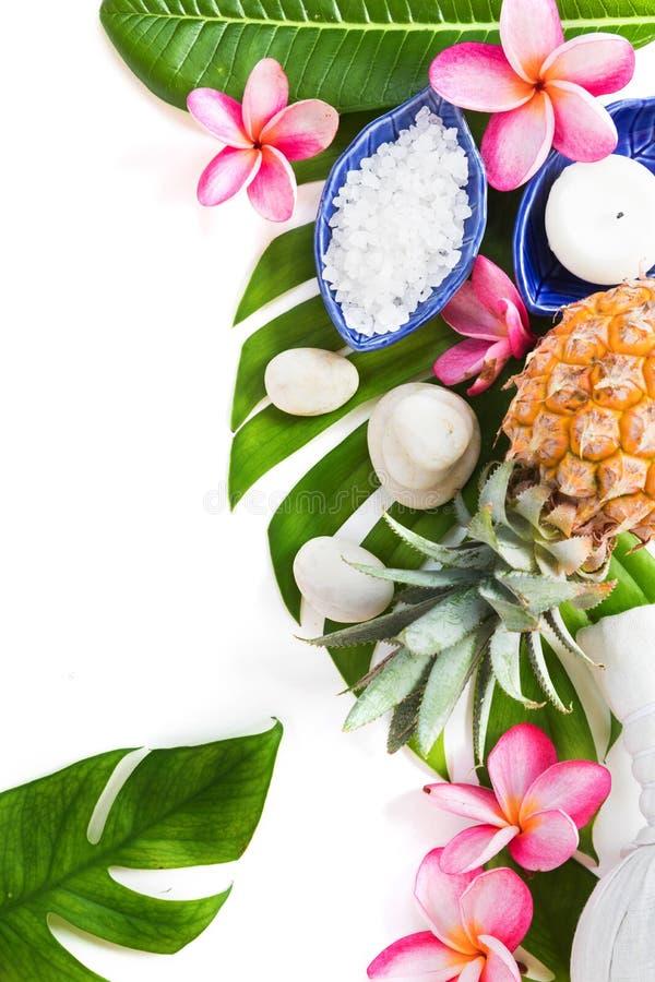 Zdroju poj?cia ziele botanicznej tropikalnej soli kokosowego oleju i plumeria kwiaty na zwrotnika li?cia t?a mieszkaniu k?a?? odg obraz stock