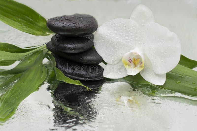 Zdroju tło - orchidei czerni bambus na wodzie i kamienie obrazy stock