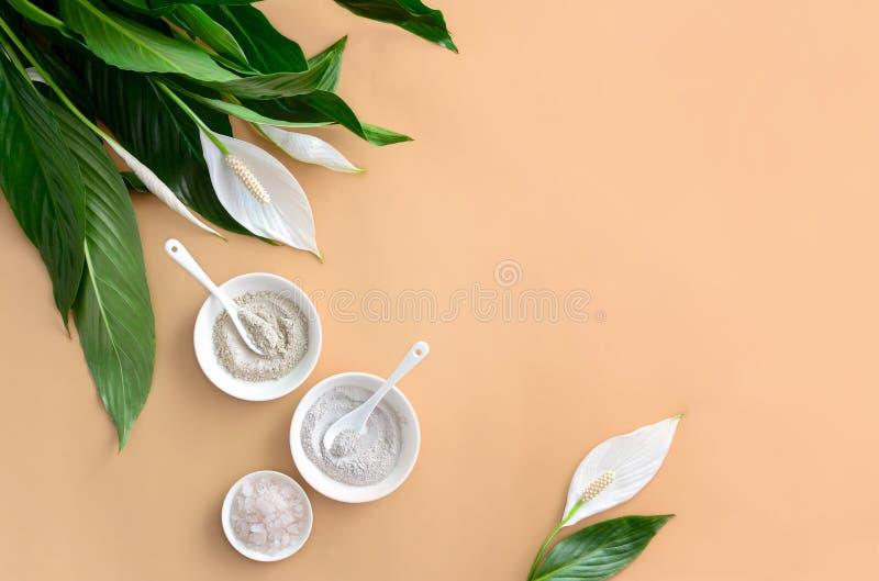 Zdroju tło z kosmetycznymi glinami fotografia stock