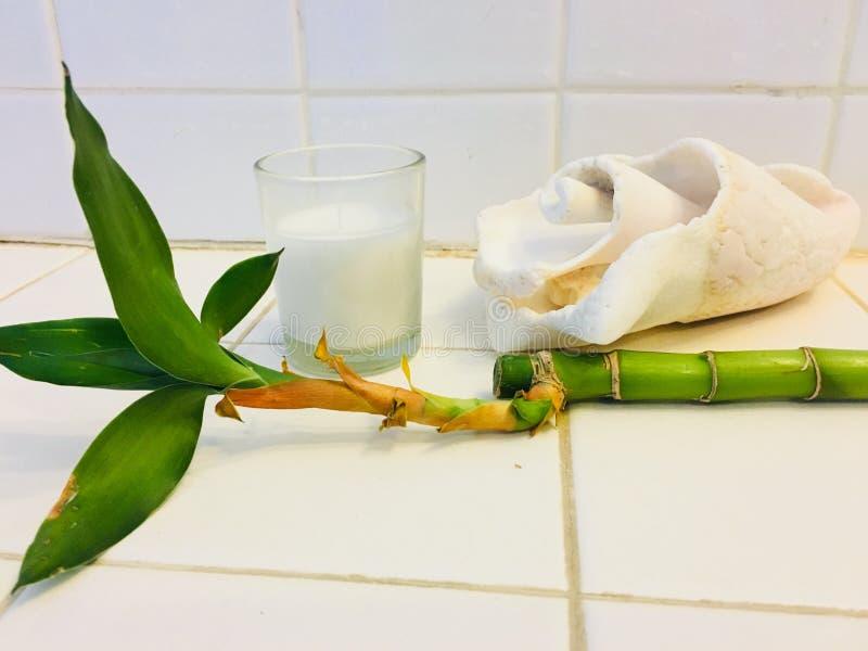 Zdroju tercetu Seashell, świeczka i bambus, fotografia stock
