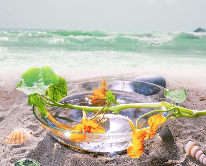 Zdroju wciąż życie na plaży fotografia stock