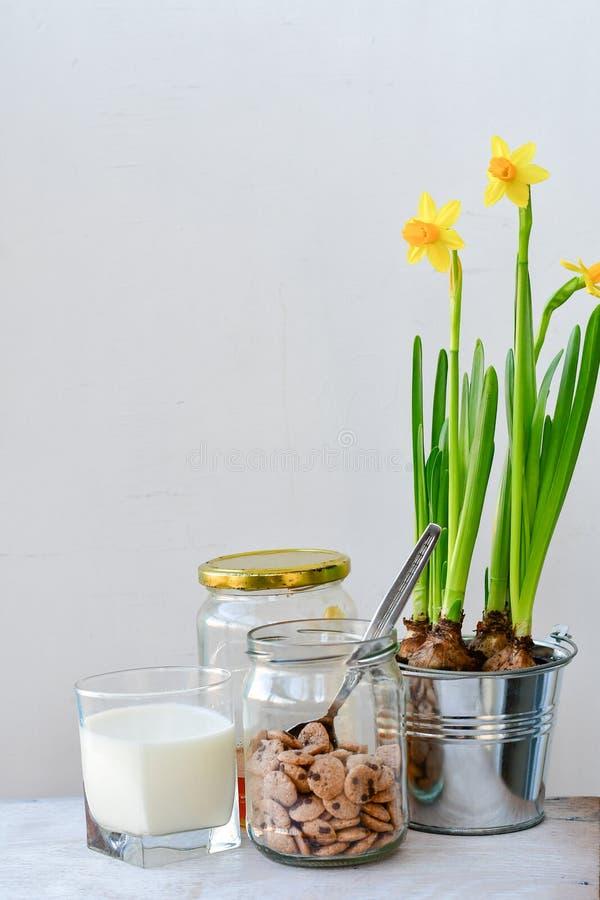 zdrowa żywność fotografia stock
