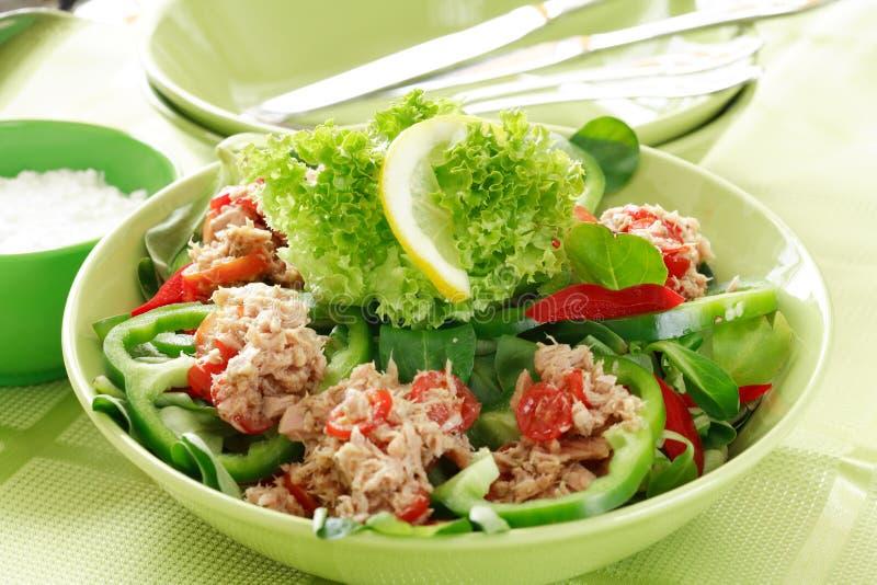 zdrowa żywność sałatkowy tuńczyka zdjęcia stock