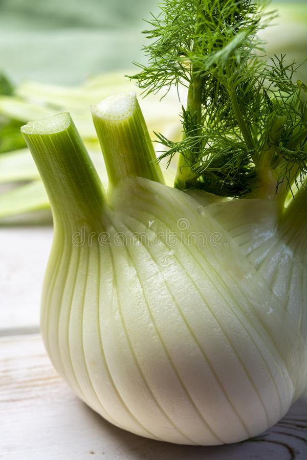 Zdrowa jarzynowa dieta, surowe ?wie?e Florence koperu ?ar?wki zdjęcie royalty free