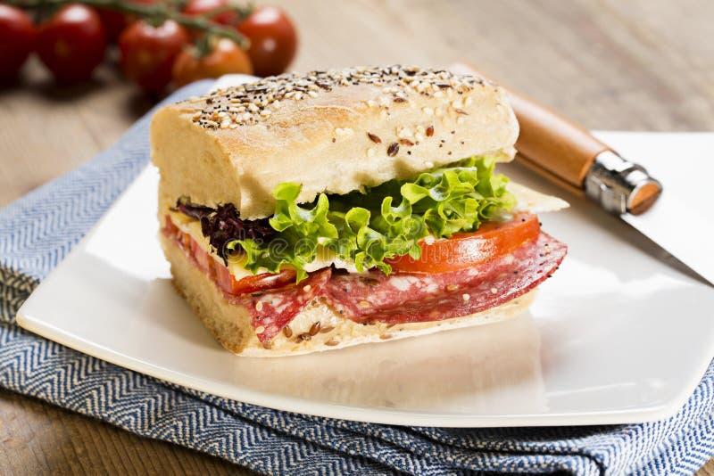 Zdrowa kanapka słuzyć na błękitnym placemat obrazy stock