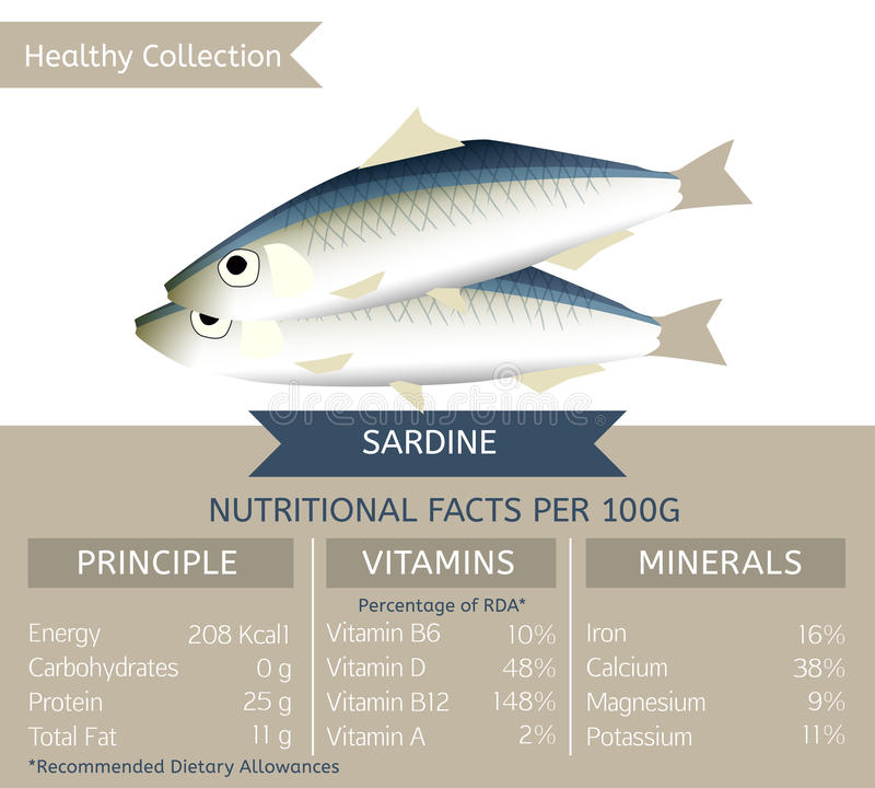Zdrowa kolekci ryba ilustracji