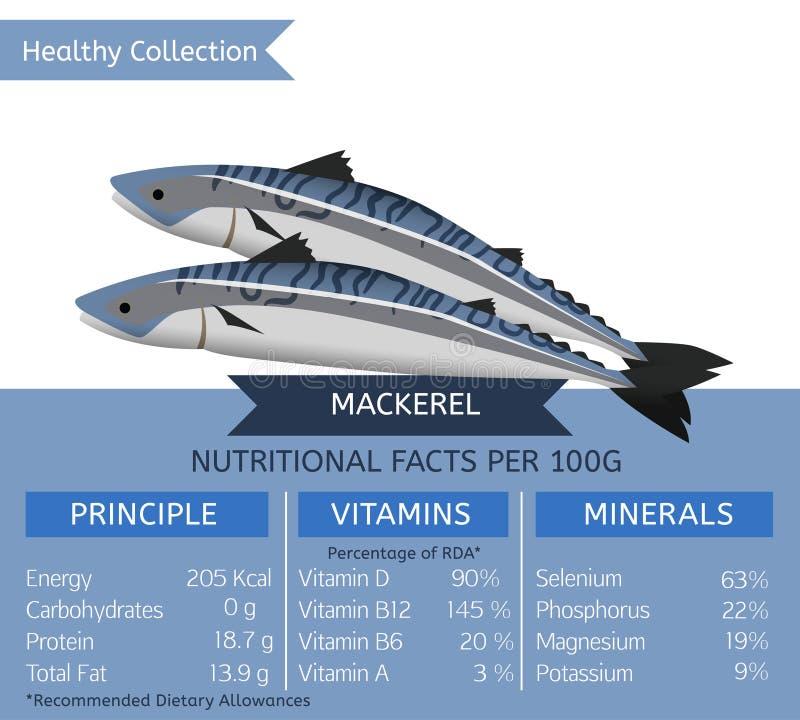 Zdrowa kolekci ryba royalty ilustracja