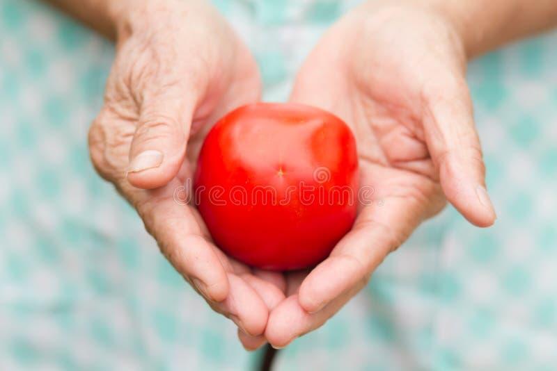 Zdrowa starsza kobieta trzyma świeżego pomidoru obrazy royalty free