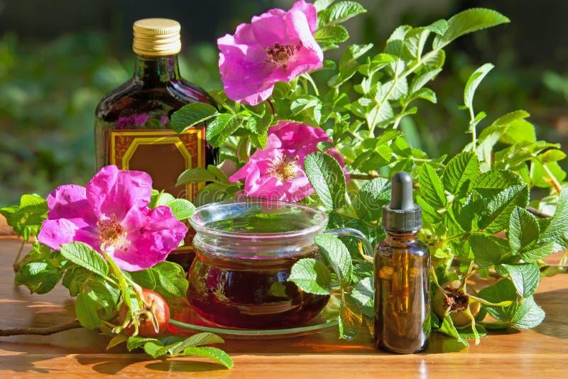 Zdrowe herbaty i tincture butelki dogrose jagody Ziołowy medi fotografia stock