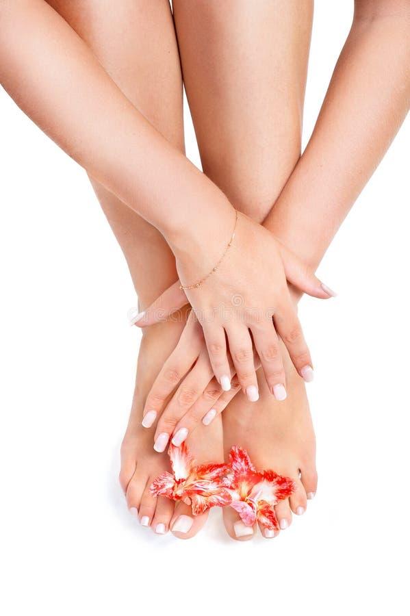 Zdrowe nogi obrazy stock