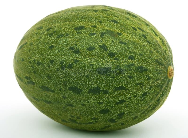 zdrowe owoce melon obraz royalty free