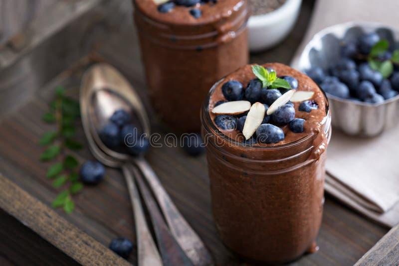 Zdrowego weganinu chia czekoladowy pudding zdjęcia royalty free