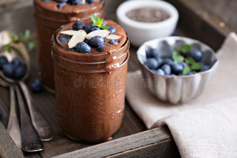 Zdrowego weganinu chia czekoladowy pudding fotografia stock