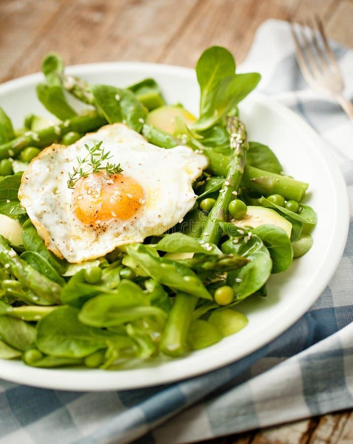 Zdrowej wiosny zielona sałatka z jajkiem zdjęcia royalty free
