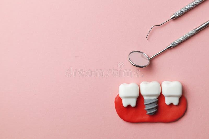 Zdrowi biali zęby i wszczepy na różowych narzędziach tła i dentysty odzwierciedlają, haczą, Odbitkowa przestrzeń dla teksta obrazy royalty free