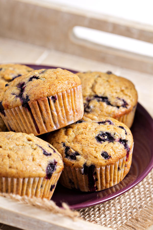 Zdrowi czarna jagoda banana muffins obraz royalty free